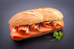 Fresh salmon sandwich Stock Images
