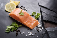 Fresh salmon with spices, cooking concept Royalty Free Stock Images