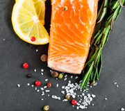 Fresh salmon. With spices on dark background Stock Photography
