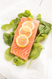 Fresh salmon with spinach and lemon Stock Photography