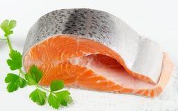 Fresh salmon steak Royalty Free Stock Image