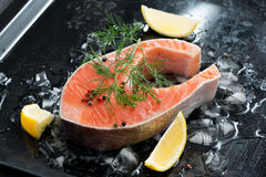 Fresh salmon steak with dill and lemon on ice. Top view Royalty Free Stock Photography