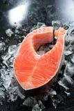 Fresh salmon steak on ice Stock Photos