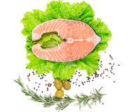 Fresh salmon steak Stock Photography