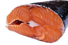 Fresh salmon steak isolated on the white background. Salmon Red Fish Steak. Large Pile of trout steak. Big organic steaks of salmo. N lined up. Big pieces raw Royalty Free Stock Photo