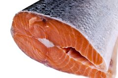 Fresh salmon steak isolated on the white background. Salmon Red Fish Steak. Large Pile of trout steak. Big organic steaks of salmo. N lined up. Big pieces raw Stock Photos