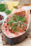 Fresh salmon steak, lemon and spices prepared for cooking Royalty Free Stock Photos