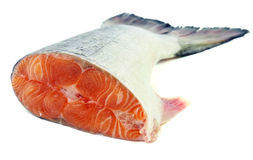Fresh salmon tail Stock Photography