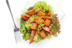 Fresh salmon vegetable salad. Royalty Free Stock Photo