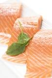 Fresh salmon on white background. Stock Photography