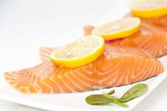 Fresh salmon on white background. Stock Images