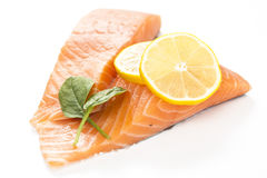 Fresh salmon on white background. Royalty Free Stock Image