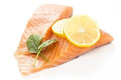 Fresh salmon on white background. Royalty Free Stock Image