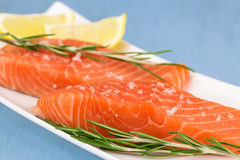 Fresh salmon Royalty Free Stock Photography