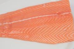 Fresh salmon. Fresh fresh salmon, a white platter Stock Image
