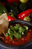 Fresh Salsa Stock Image