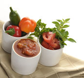 Fresh Salsa Royalty Free Stock Photography