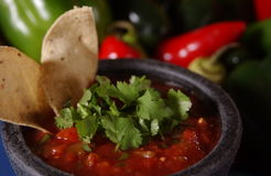 Fresh Salsa Stock Photo