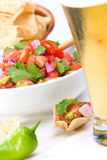 Fresh salsa and corn chips Stock Images