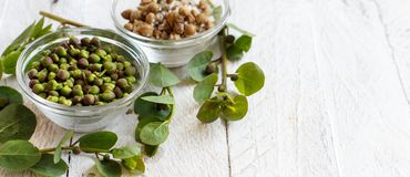 Fresh and salted capers. In bowls close up Stock Images