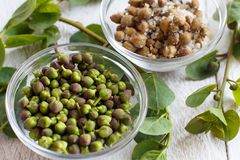 Fresh and salted capers. In bowls close up Stock Image