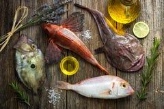 Fresh saltwater fish Royalty Free Stock Photography