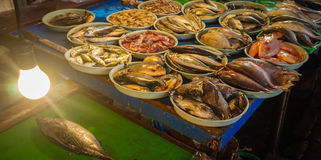 Fresh saltwater fishes displayed on white plastic bucket photo taken in Jakarta Indonesia Royalty Free Stock Photography