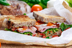 Fresh Sandwich with Bacon Lettuce Tomato and Mozzarella Royalty Free Stock Images