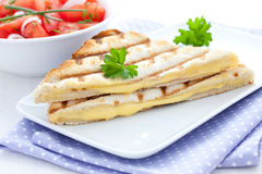 Fresh sandwich with cheese Stock Photography