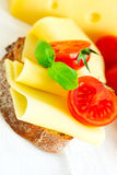 Sandwich with cheese. Fresh sandwich with cheese, tomatoes and basil Stock Image
