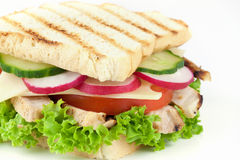 Fresh sandwich with chicken meat Royalty Free Stock Photography