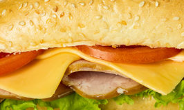 Fresh Sandwich close-up Royalty Free Stock Photos