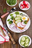 Fresh sandwich with egg, radish and cucumber. On a white plate garnished with spinach, red onion and thyme Royalty Free Stock Photography
