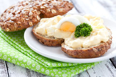 Fresh sandwich with egg salad Royalty Free Stock Image