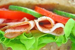 Fresh sandwich with ham and cheese Stock Image