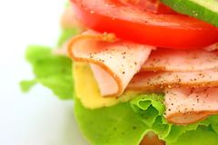 Fresh sandwich with ham and cheese and vegetables Stock Photos