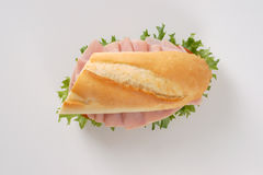 Fresh sandwich with ham Royalty Free Stock Photo