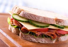 Fresh sandwich Stock Image