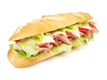 Fresh sandwich with meat and vegetables Stock Photo