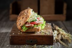 Fresh sandwich with roasted chicken, lettuce and tomato royalty free stock images