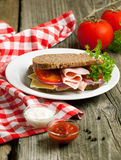 Fresh sandwich with sauces Royalty Free Stock Photos