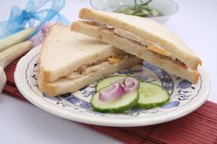 Fresh sandwich with tuna fish Royalty Free Stock Image