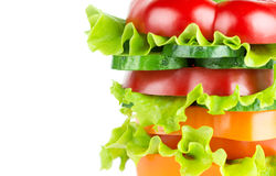 Fresh sandwich with vegetables Royalty Free Stock Photo