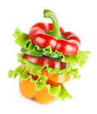 Fresh sandwich with vegetables Royalty Free Stock Image