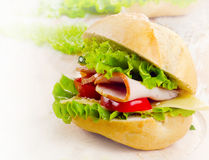 Fresh sandwich Royalty Free Stock Image