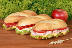 Fresh Sandwiches. With ham, salami and smoked salmon royalty free stock images