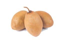 Fresh sapodilla fruits Royalty Free Stock Images