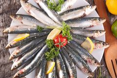 Fresh sardine Stock Photo