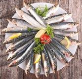 Fresh sardine. Fresh raw sardine on wood Royalty Free Stock Photography