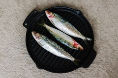 Fresh sardines on the cast-iron frying pan. Fresh sardines on the cast-iron frying pan, ready to be cooked. Omega 3. Mediterranean fish on frying pan Royalty Free Stock Image